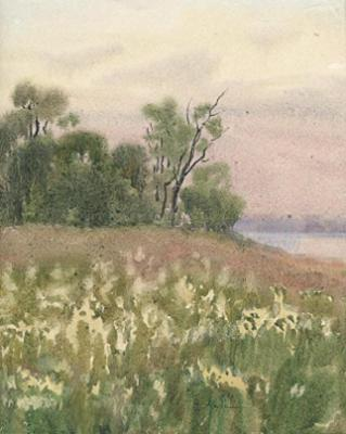 Untitled 14 (White flower meadow by lake)